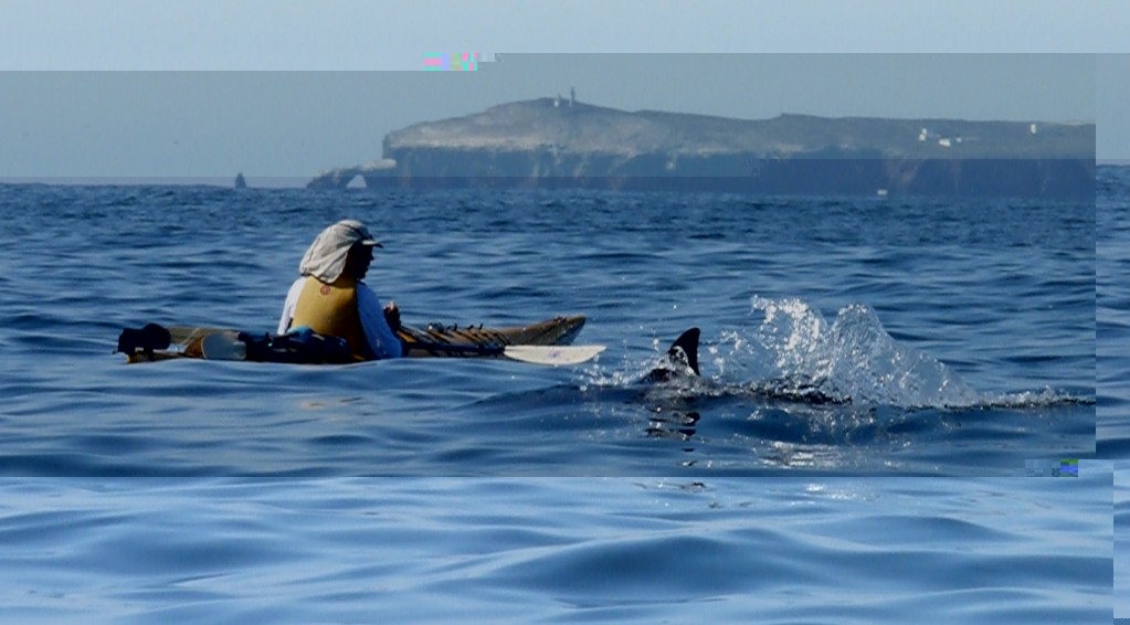 Pedro Frigola kayaking off Anacapa - photo by Bryant Burkhardt